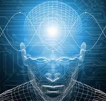 Активный и консервативный трейдинг — причина в строении мозга