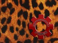 Советник Форекс - Gepard
