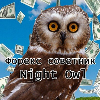 Forex советник Night Owl