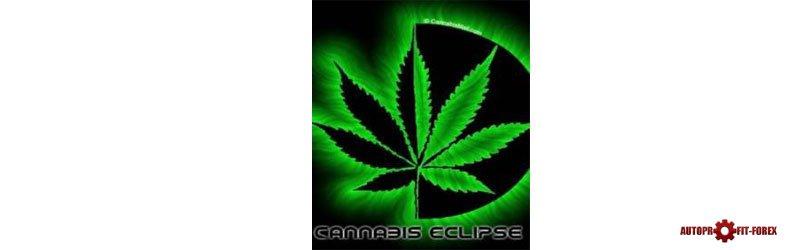 Советник форекс Canabis Eclipse 50