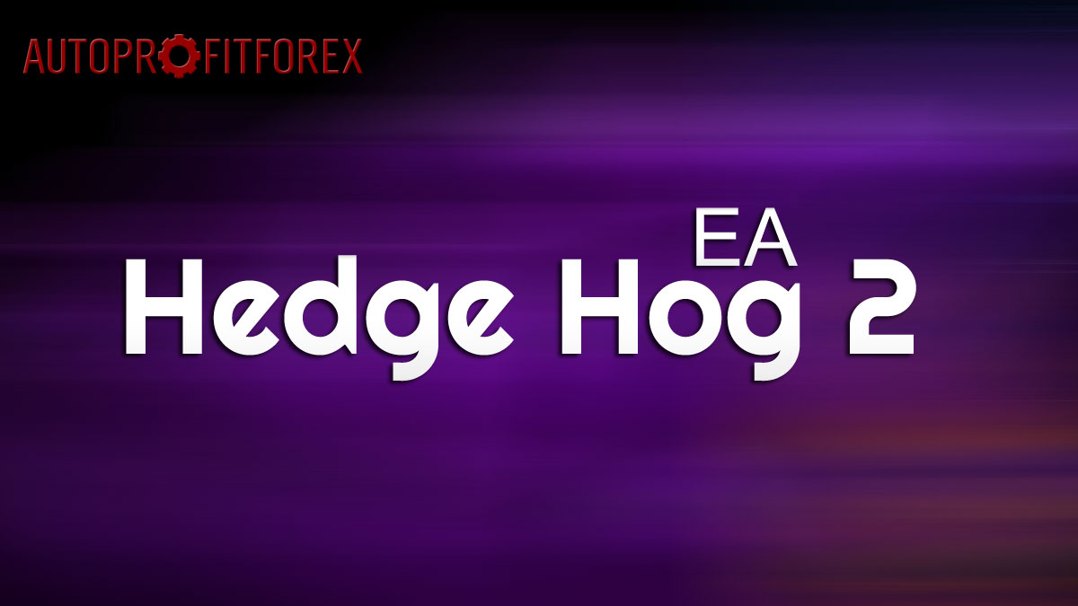 Советник Forex Hedge Hog 2