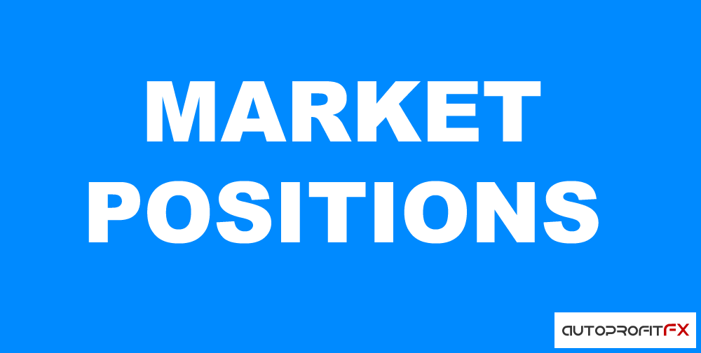 MARKET POSITIONS - Индикатор MT4